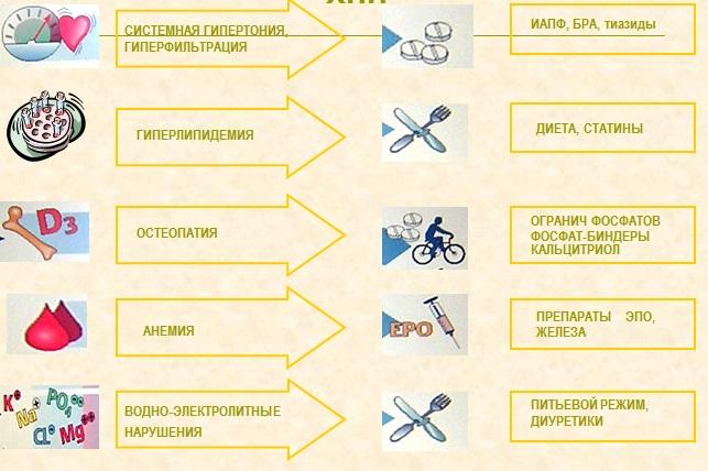 Основные принципы ведения больных с ХПН