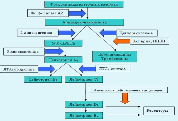 Аспириновая бронхиальная астма